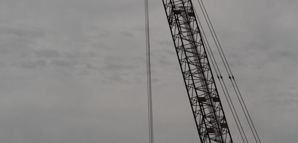 Crane in Gray